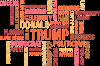 elezioni amministrative 2017 campagna elettorale web